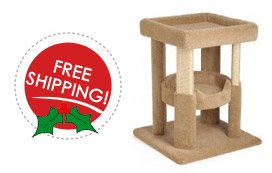 free shipping and sale price on cat coliseums