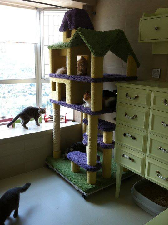 Deluxe Dollhouse Cat Condo