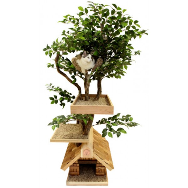 60146d53bf8d Cat Trees That Look Like Real Trees - CatsPlay Superstore