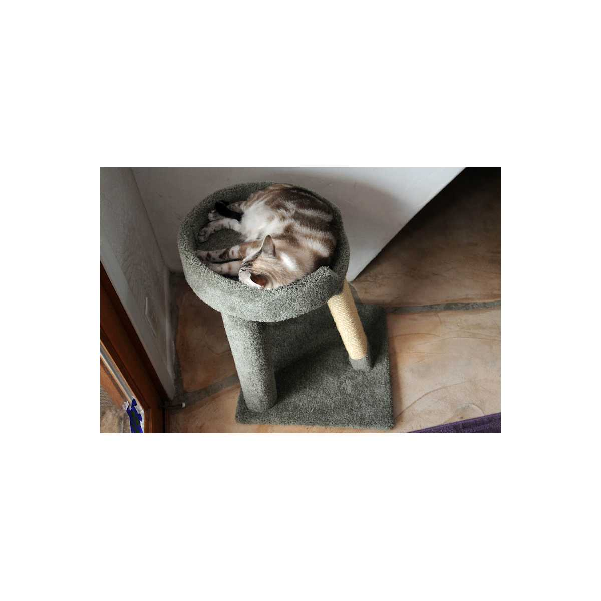 Elevated Cat Bed