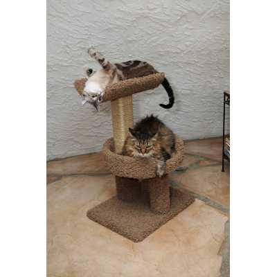 New Cat Window Perch
