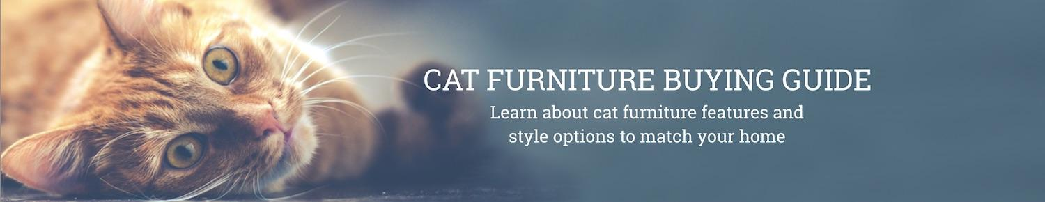 Cat furniture buying guide
