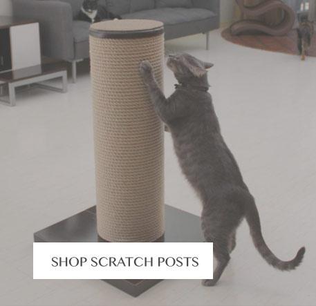 Shop Cat Scratching Posts