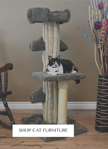 Shop Cat Furniture