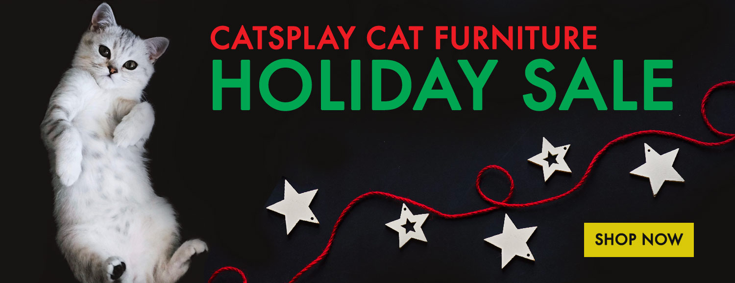 Cat furniture: trees, gyms, condos, and more
