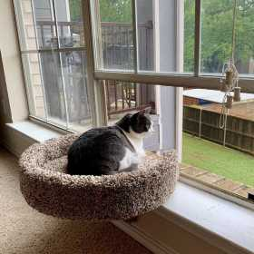 The Tub Sleeper Cat Window Perch - a Favorite Lounge Spot for Cats