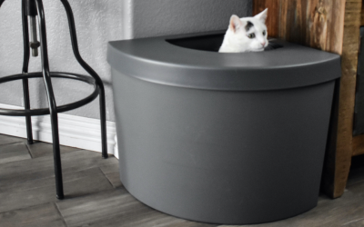 4 Simple Tips for Finding the Perfect Cat Litter Box