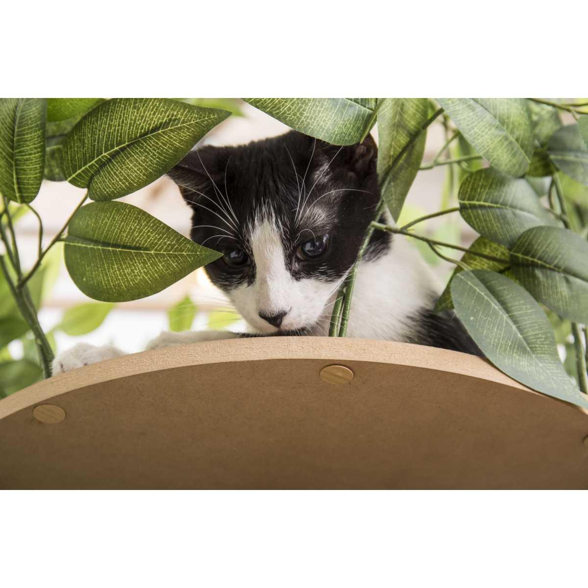 Luxury Cat Tree  Medium