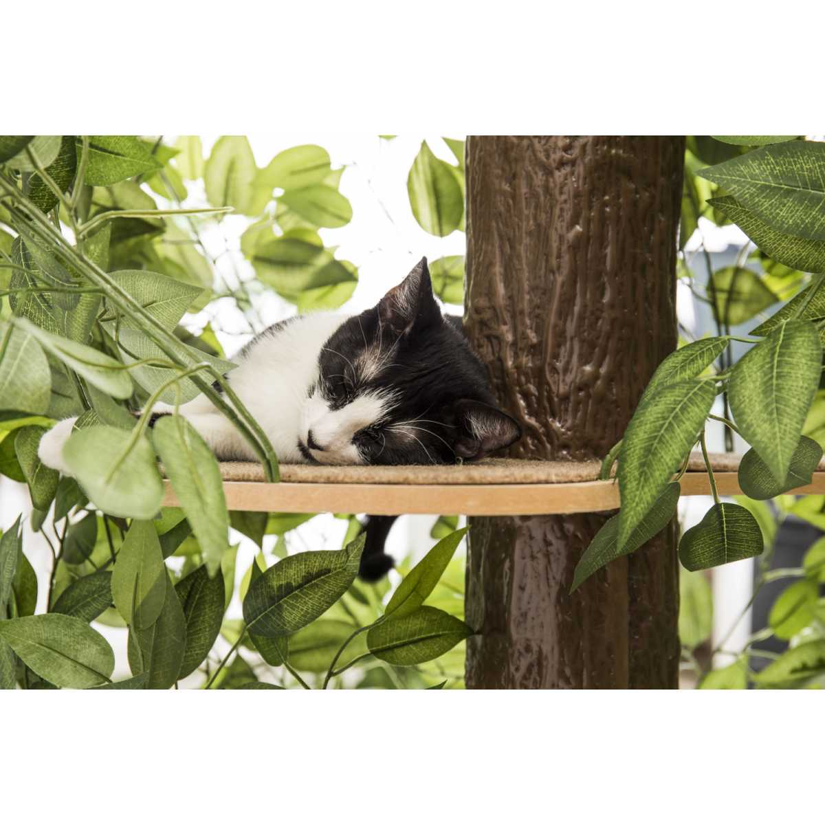 Luxury Cat Tree Large Round Base