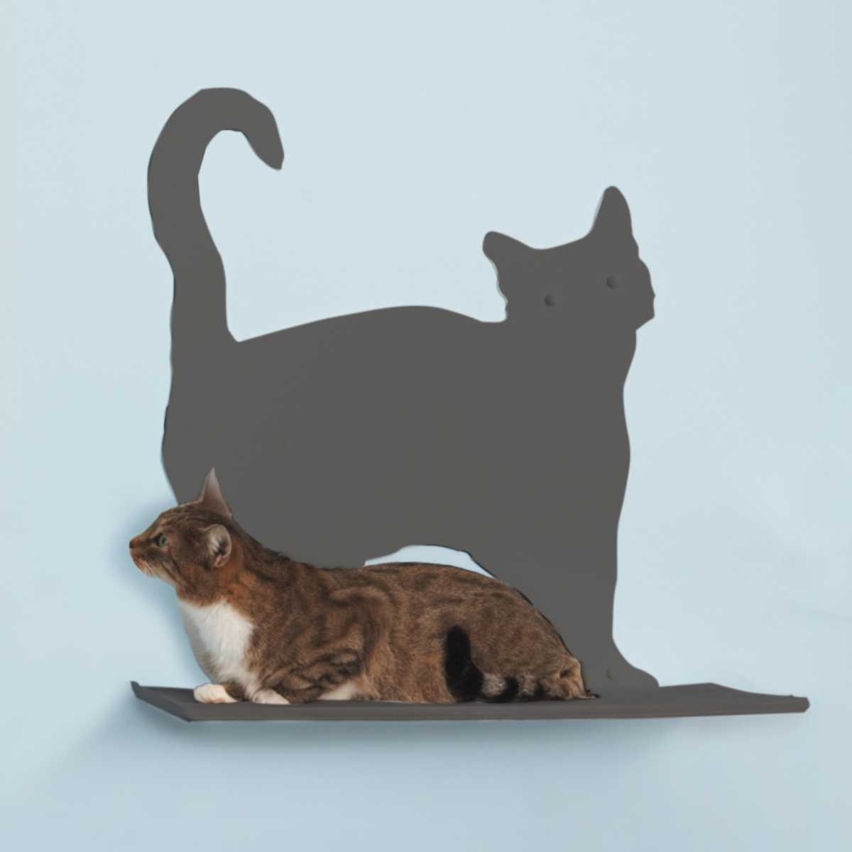 Cat Silhouette Cat Shelf Prance
