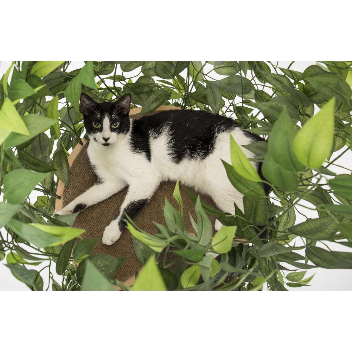 Luxury Cat Tree Large Round Base