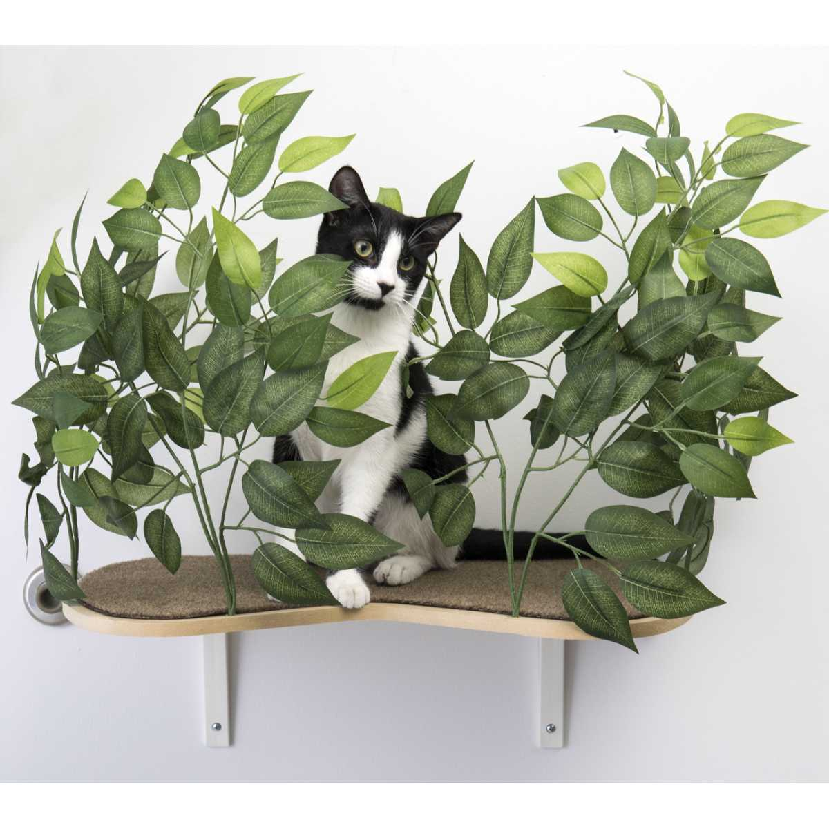 Canopy Cat Wall Shelves With Leaves Set Of 2