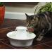 Drinkwell Avalon Ceramic Pet Fountain