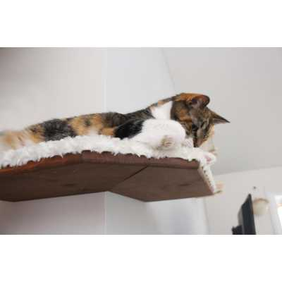 CatastrophiCreations  Fabric Covered Corner Cat Wall Shelf