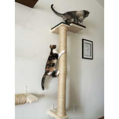 CatastrophiCreations  Vertical wall-mounted Sisal Cat Pole