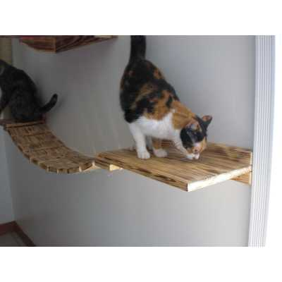 Cat Wall Walkway