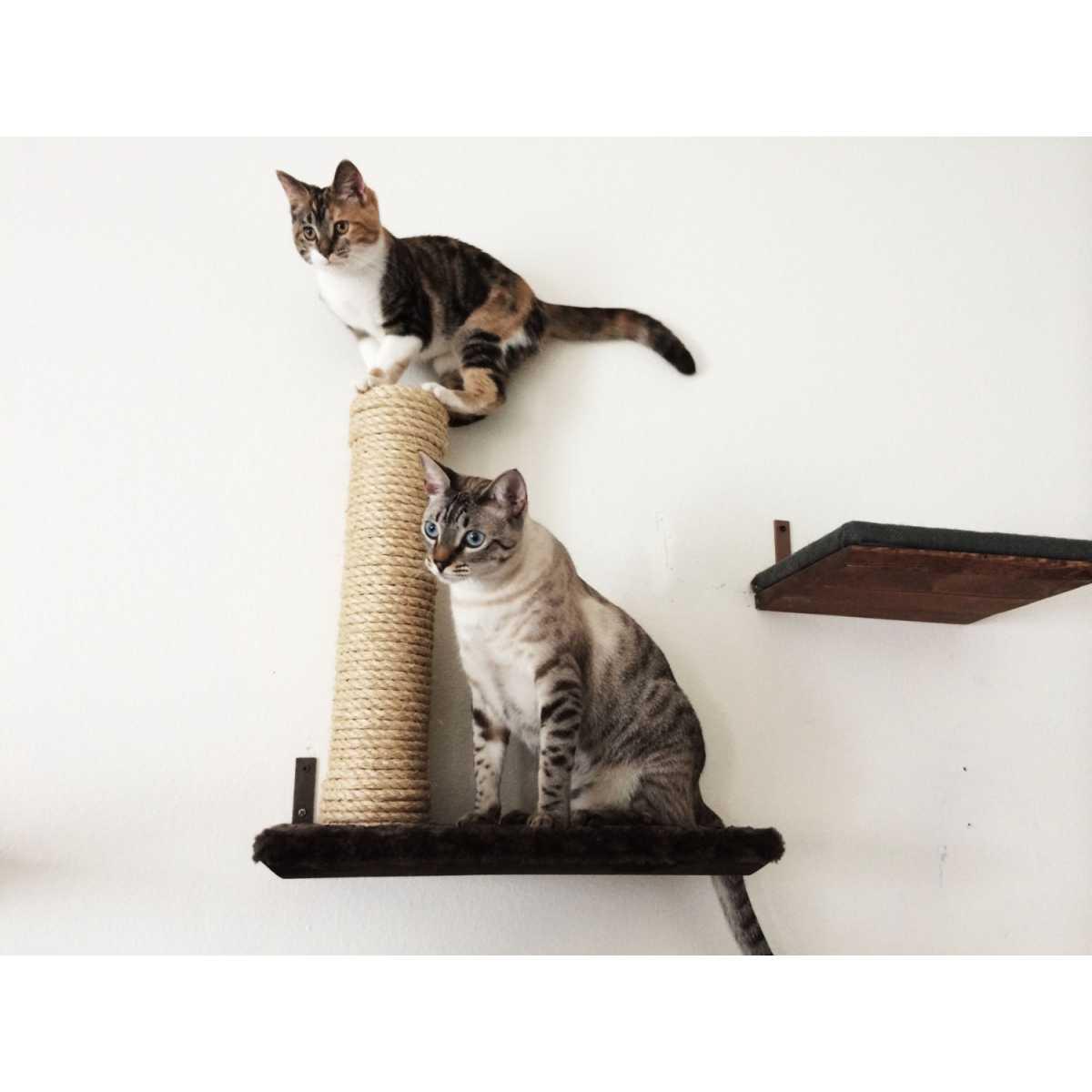 Sisal Post On 18 Inch Cat Wall Shelf