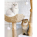 Centralia Luxury Wood & Woven Cat Tree for Large Cats