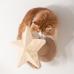Twinkle Star Celestial Cat Wall Step