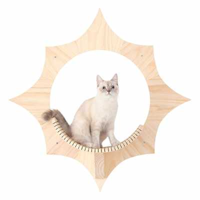 Solar Sun Shaped Celestial Cat Wall Shelf