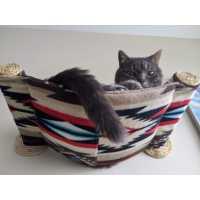 Cat Hammock - Wall Mounted Cat Bed - Tan Southwest