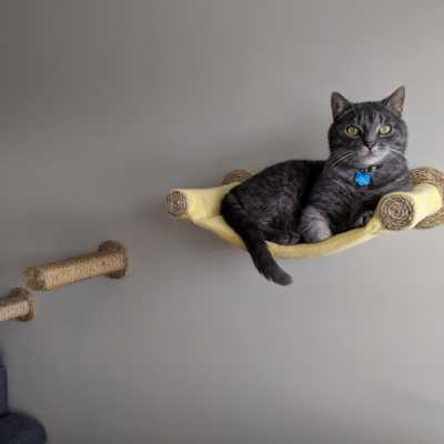Cat Hammock - Wall Mounted Cat Bed - Yellow