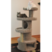 The Orbitor Cat Gym
