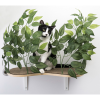 Canopy Curved Cat Wall Shelves with Leaves - Set of (2) CN001