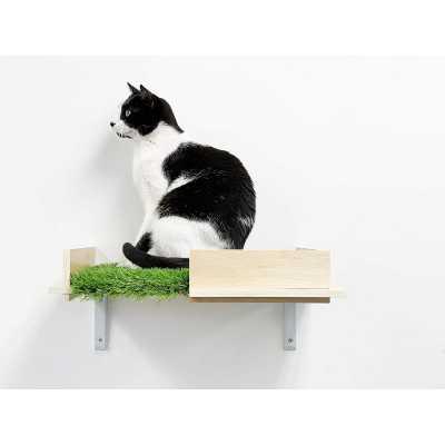 Canopy Box Cat Wall Shelves - Set of (2)
