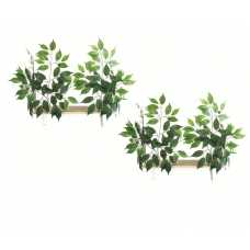 Canopy Rectangle Cat Wall Shelves with Leaves - Set of (2) CN003