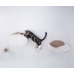 Wall Mounted Cat Play Set