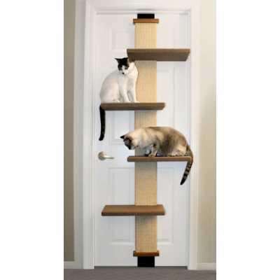 Cat Door Climber