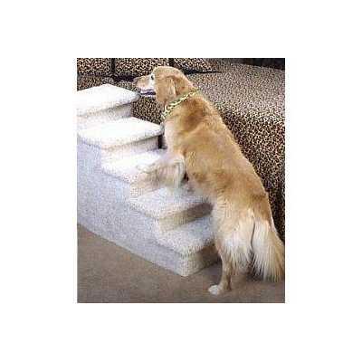 5 Step Pet Steps Image