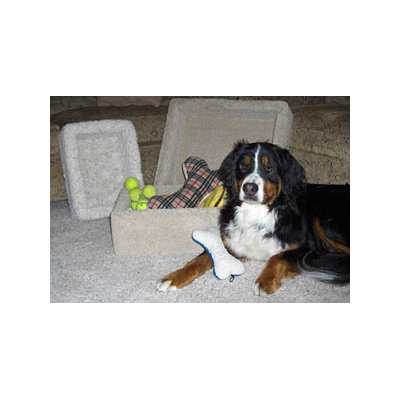 Carpeted Pet Toy Box Image