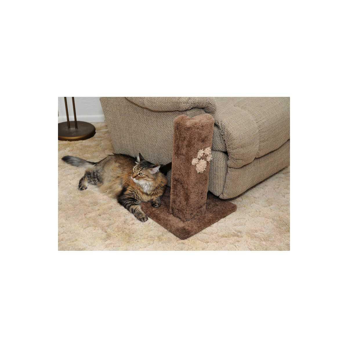 Corner Furniture Protector Cat Scratcher Catsplay Superstore
