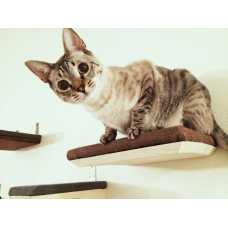 Burlap Covered Cat Shelf