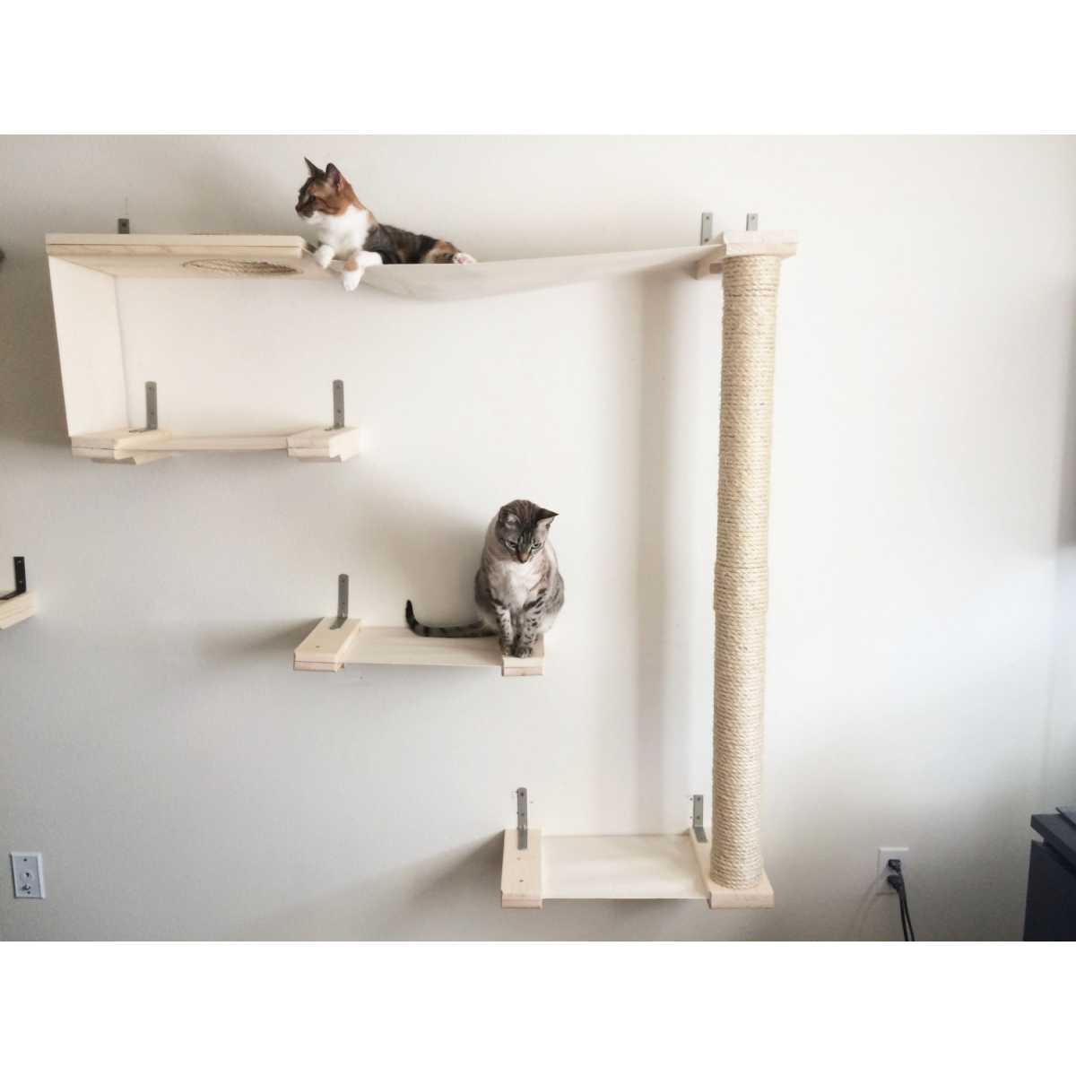 Catastrophicreations Cat Sky Track Catsplay Superstore