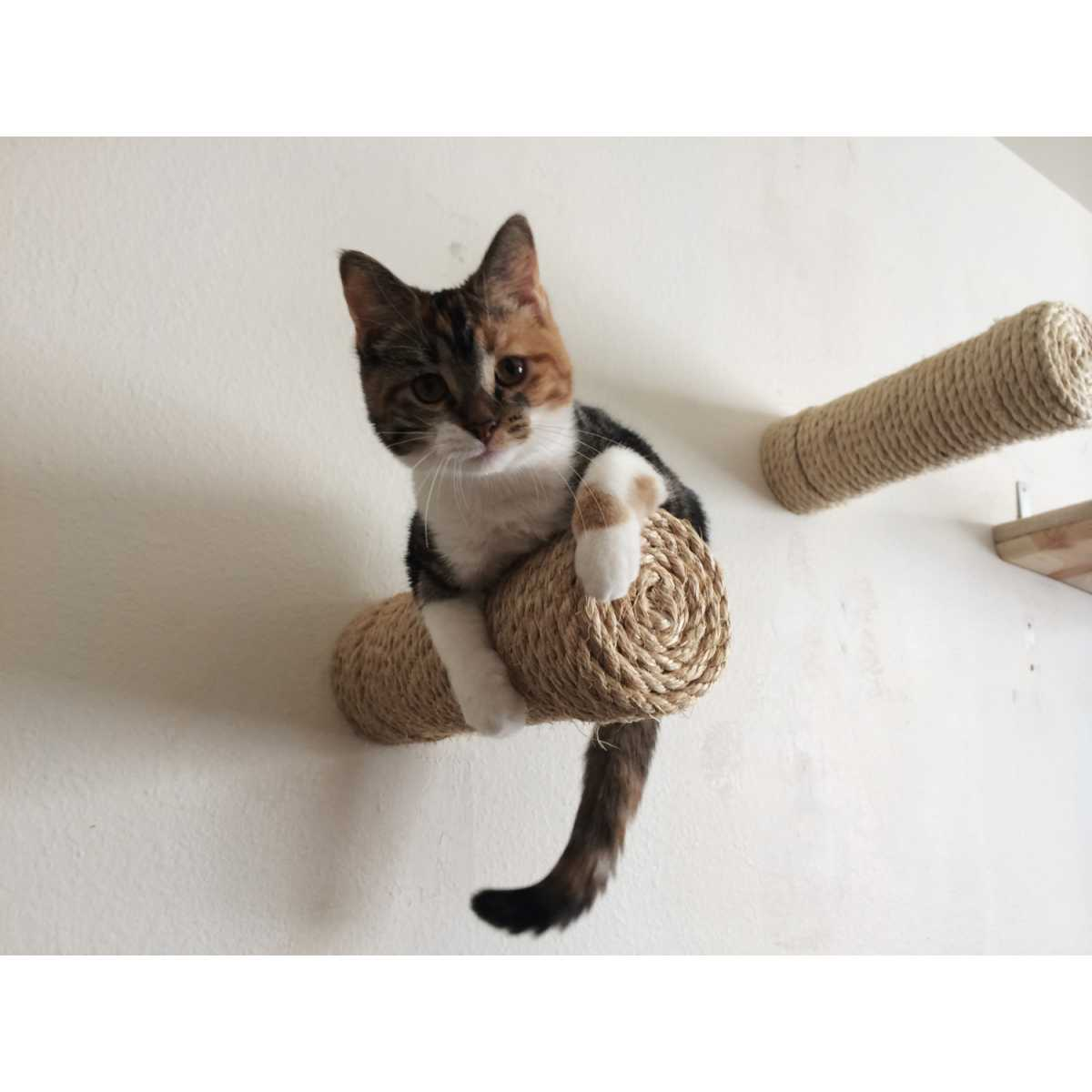 Catastrophicreations Floating Sisal Cat Wall Post