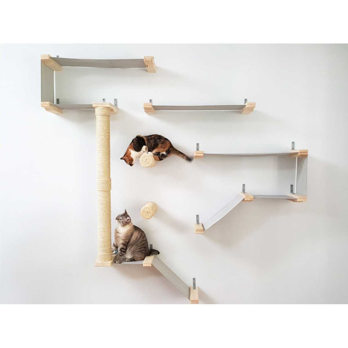 Catastrophicreations Thunderdome Wall Mounted Cat