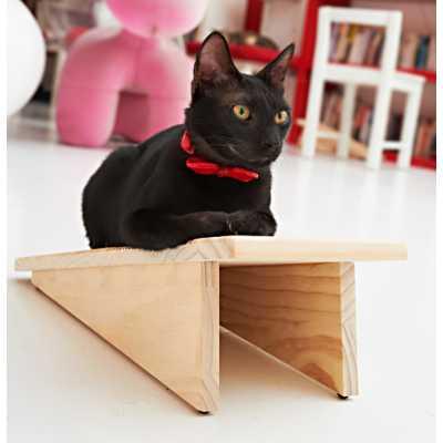 CatScratch Board