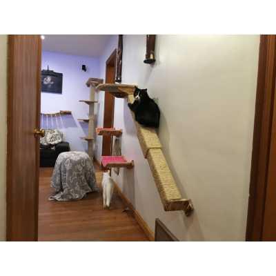 Modish Wall Mounted Cat Climbing Pole Image