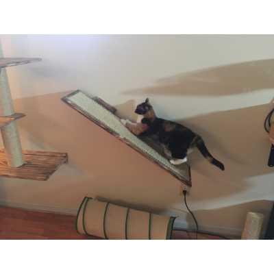 Sisal Wall Mounted Cat Ramp Image