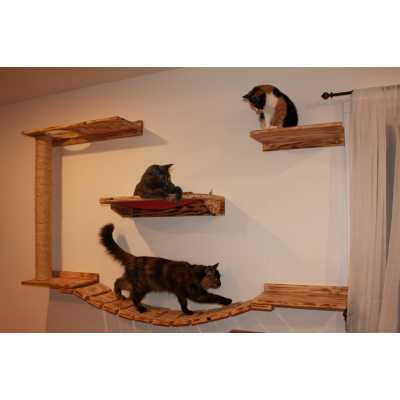 Wall Mounted Cat Play and Relax Center