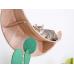 Luna Wall Mounted Cat Perch