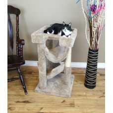 Cat's Choice Cat Scratch & Lounge
