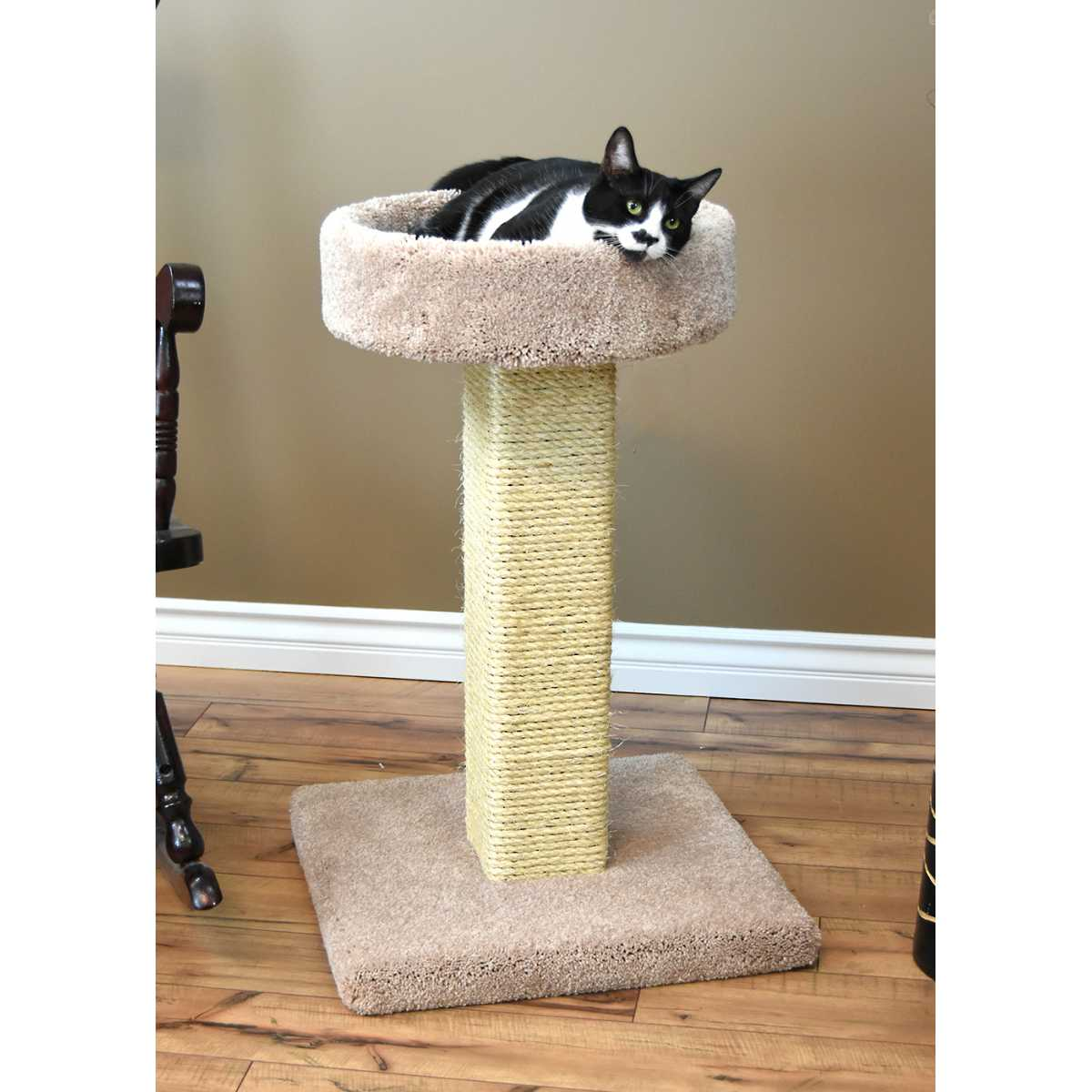 cat 39 s choice solid wood large cat scratching post and. Black Bedroom Furniture Sets. Home Design Ideas