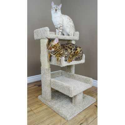 Cat's Choice 32 Inch Multi Level Cat Perch