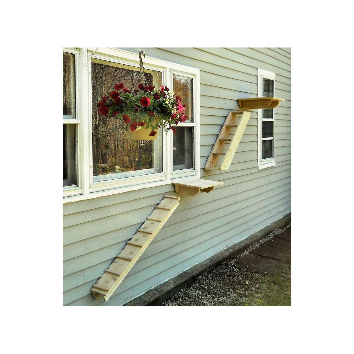 Outdoor Cedar Cat Wall System Stair Ladder Catsplay Superstore