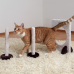 Plush Agility Activity Kit for Cats
