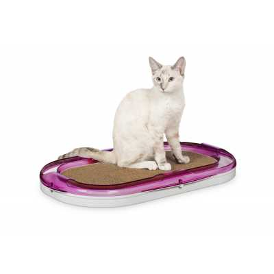 Raceaway Cat Lounger Toy 700